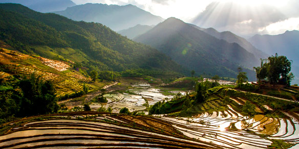 Terraced rice field during rainy season, Y Ty, Lao Cai province, Vietnam