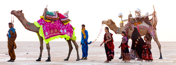 A gujarati family moving about with their camels, Gujarat, India
